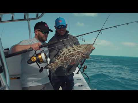 PENN Spinfisher VI Spinning Reel Product Video