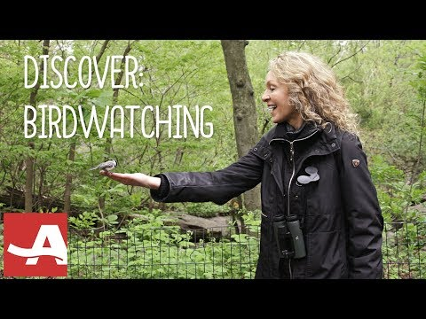 Birdwatching for Beginners with Barbara Hannah Grufferman