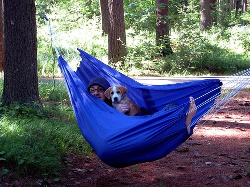 Medium image of best camping hammock