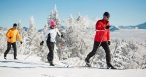 best-cross-country-skis