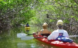 Key West Snorkeling: Half-Day Cruise with Kayaking and Snorkeling
