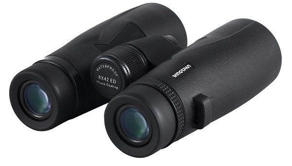 Best Compact Binoculars For Birdwatching