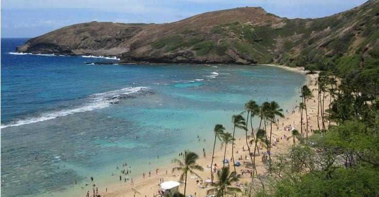 Best Hanauma Bay & Oahu Snorkeling Tours