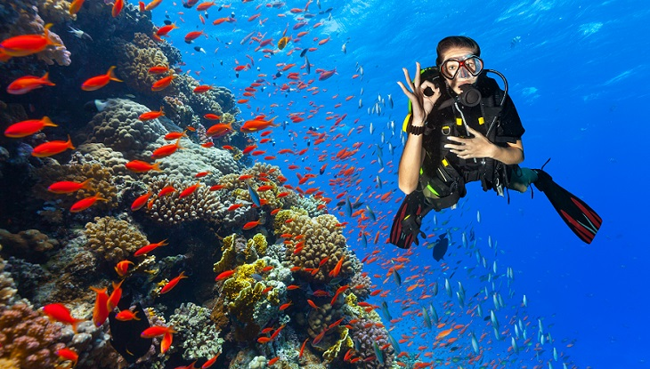 roatan diving, roatan dive shops