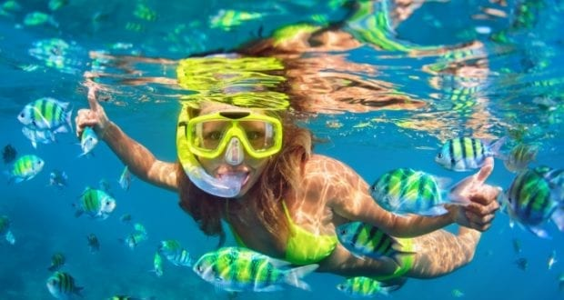 Best Snorkeling Destinations in Key West