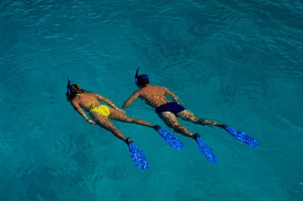 Roatan Shore Excursion Snorkeling Tour