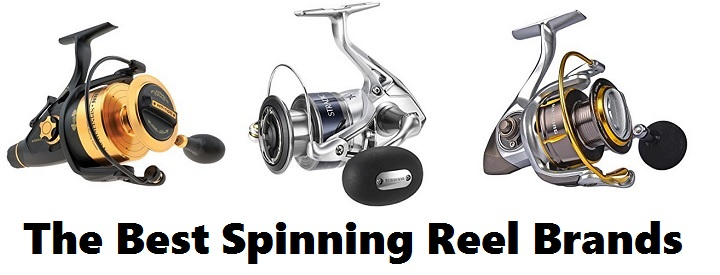 Best Spinning Reel Brands