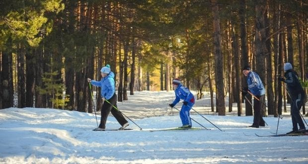 Beginners Guide To Cross Country Skiing