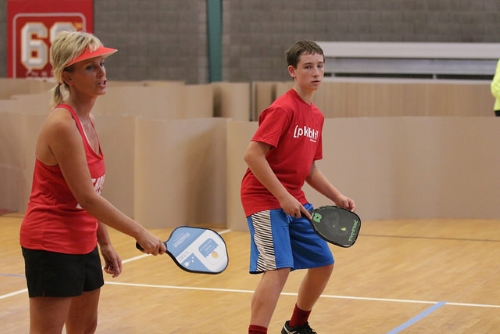 Pickleball Paddle Buyers Guide