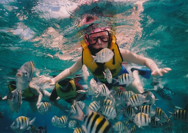 Best Snorkeling Tours In Cancun
