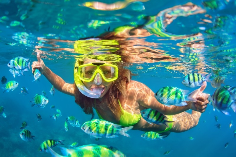 Best Snorkeling Tours in Cozumel