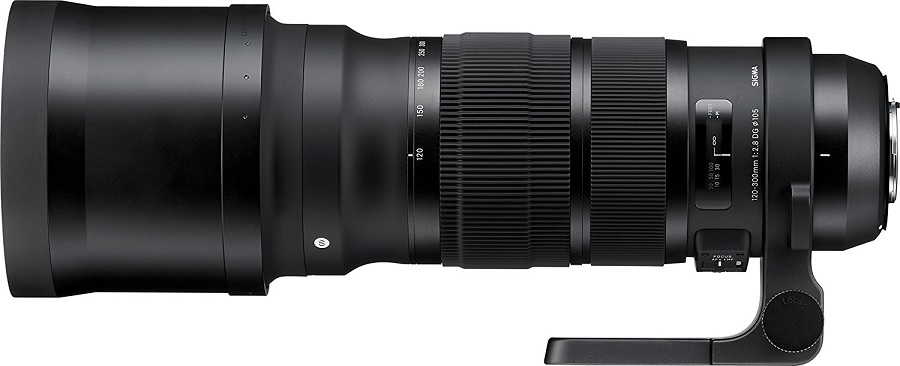 Wildlife Photography Camera Lenses