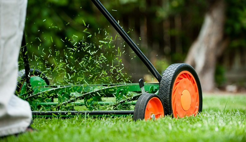 Compared To A Rotary Gas Mowers Reel Lawn Are Er And More Environmentally Friendly With Zero Emissions