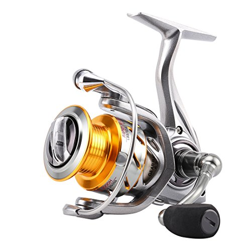 The 7 Best Saltwater Spinning Reels Reviewed For 2019