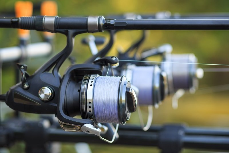 Best Spinning Reel For Saltwater