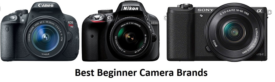 best beginner camera brands