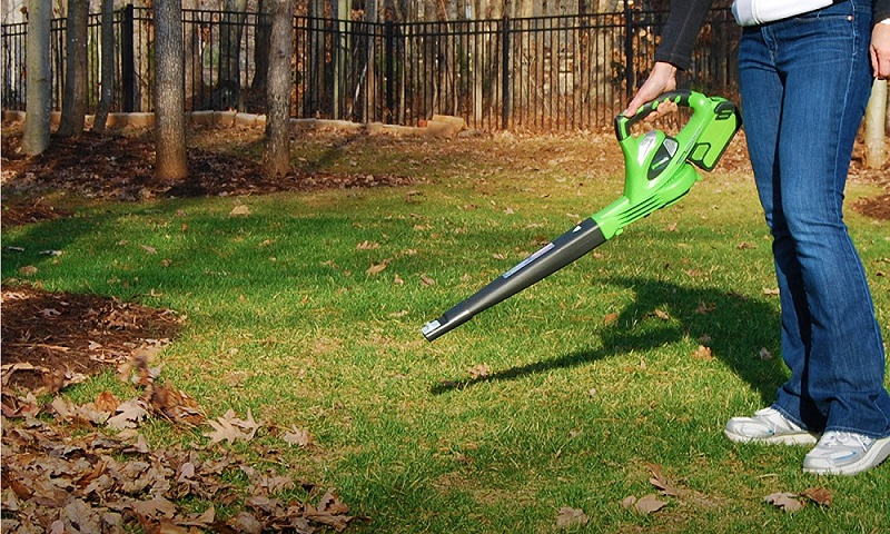 Best Battery Powered Leaf Blower 2019 The 5 Best Cordless Leaf Blowers   [Reviews 2019] | Outside Pursuits