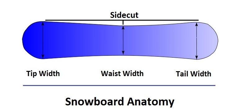 All Mountain Snowboard Anatomy