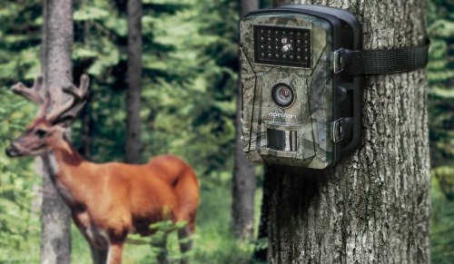 hunt trail camera example image