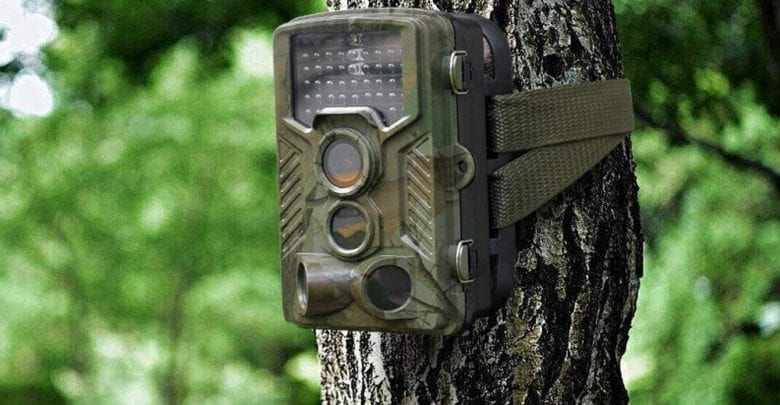 Best Trail Cameras 2019 The 6 Top Rated Best Trail Cameras Reviewed   [2018 / 2019