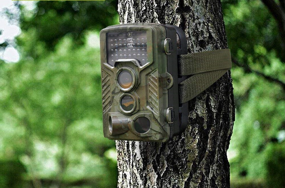 hunt trail camera feature image
