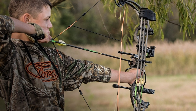 Best Bows For Hunting Recurve Compound - Guide Image