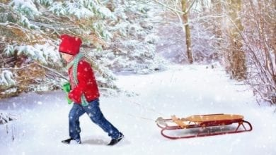 Sledding Tips Safety