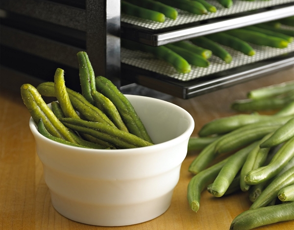 food dehydrator vegatables green beans - guide image