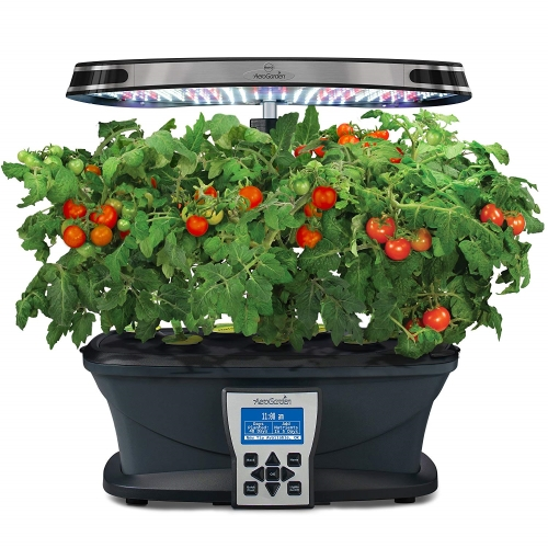 The 5 Best Indoor Herb Garden Kits 2020 Reviews Outside Pursuits