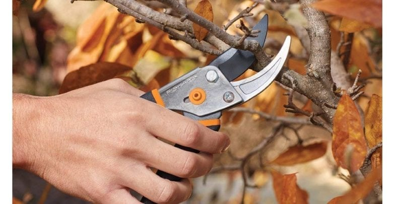 Fiskars-91095935J-Bypass-Pruning-Shears feature image 1