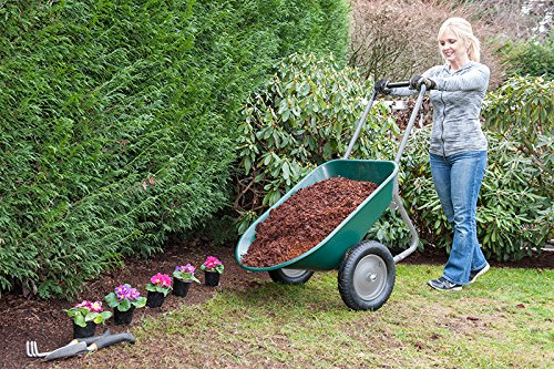 Marathon-Dual-Wheel-Residential-Rover-Wheelbarrow feature 1