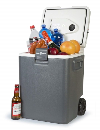 car cooler freezer