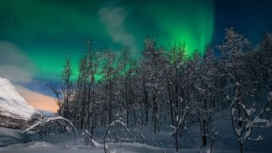 Best Northern Lights Tours In Norway