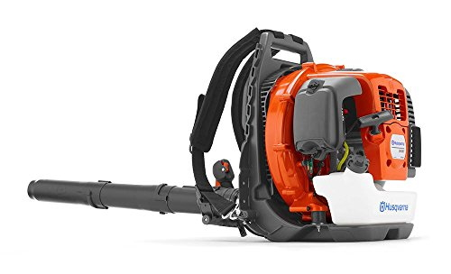 Best Gas Leaf Blower 2020.The 5 Best Backpack Leaf Blowers 2020 Reviews Outside