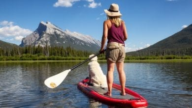 tips for beginner paddle boarders