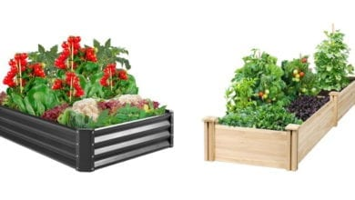 best raised bed gardens