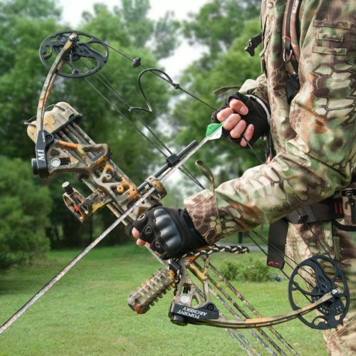 Best Bows For Hunting
