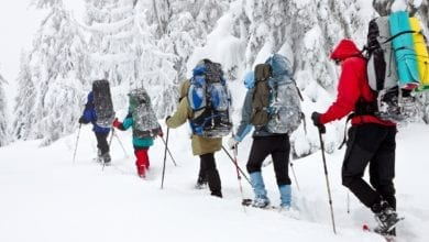 Essential Gear for Snowshoeing
