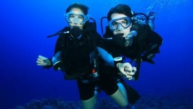 what is the Scuba Diving Buddy System