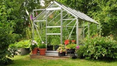 Essential Items for Gardening